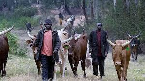 Fulani Herdsmen