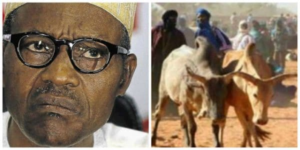 Buhari urged Fulani herdsmen to ignore  call to return to Northern part of the country
