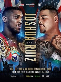 Anthony Joshua vs. Andy Ruiz Jr