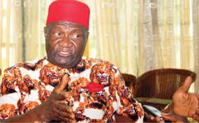 President General of Ohanaeze Ndigbo, Chief Nnia Nwodo