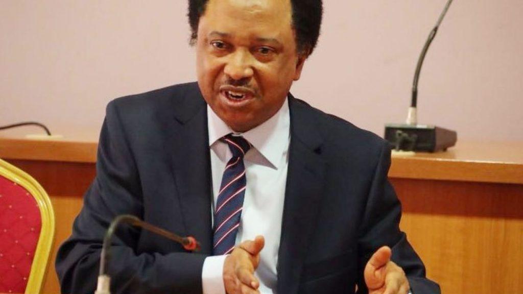 Senator Shehu Sani